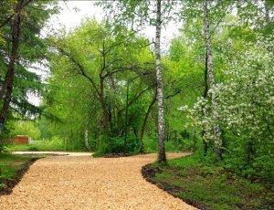 Затюменский парк