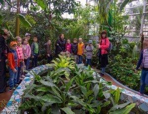 Детский ботанический сад