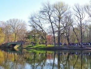Парк Проспект Бруклина