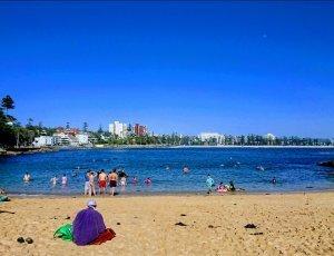 Общественный пляж Shelly Beach