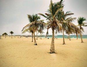 Пляжный Парк Аль Мамзар