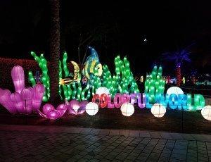 Светящийся парк Dubai Garden Glow