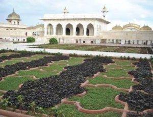Виноградный сад Anguri Bagh