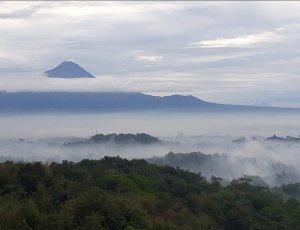 Место для пикника Yogyakarta berwisata