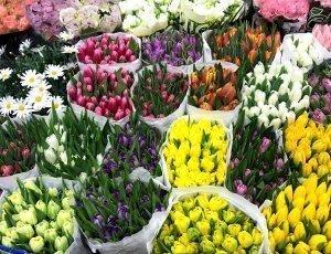 Фото Рижский рынок цветов