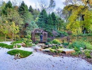 Ботанический сад имени М. М. Гришко