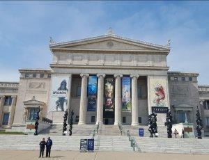 Филдовский музей естественной истории