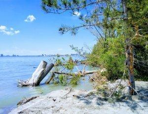 Пляж Ханланс Пойнт