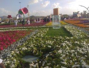 Арруддаф Парк