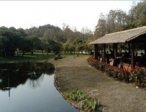 Гонгкинг Форест Парк