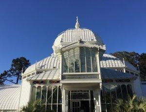 Фото Ботанический сад: Цветочная консерватория