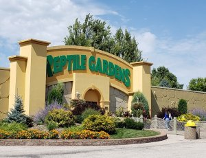 Зоопарк «Сады Рептилий»
