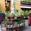 Фото Anitsangkung Nunnery 8