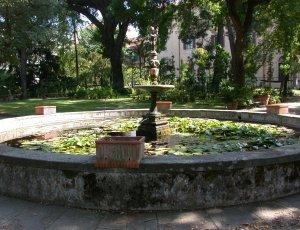Ботанический сад Флоренции