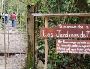 Ботанический сад Мандор Гарденс