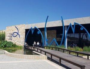 Израильский аквариум