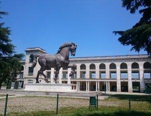 Скульптура конь Леонардо да Винчи