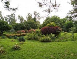 Парк Будды Джаянти