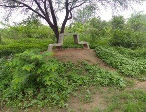 Парк биоразнообразия Аравали