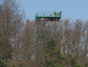 Смотровая Башня Пачолек Хилл