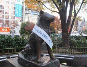 Фото Памятник собаке Хатико в Токио