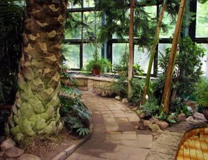 Пальмовый дом