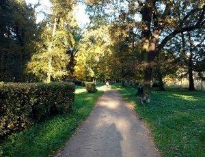 Парк Восточный