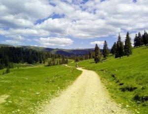 Горы Бихор