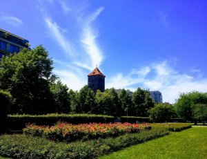 Фото Летенские сады