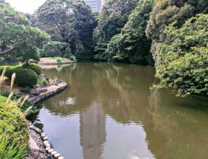 Национальный парк Синдзюку-Гёэн