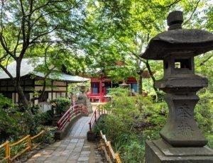Парк Инокасира