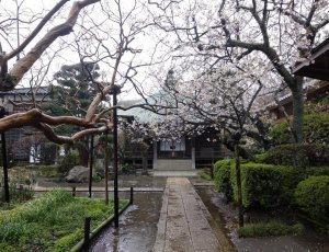Храм Гокуракудзи