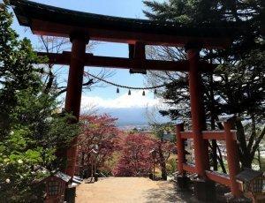 Храм Arakura Fuji Sengen Jinja