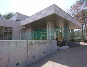 Музей «Fujisan»