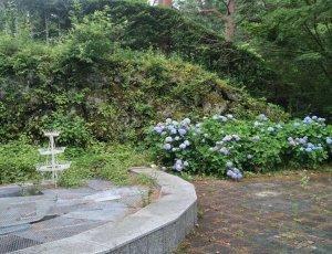 Grace Forest Garden