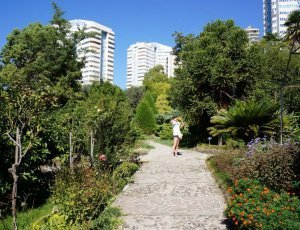 Сад-музей «Дерево Дружбы»