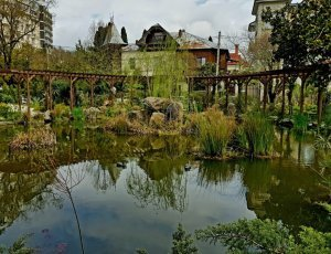 Музей-сад Фитофантазия