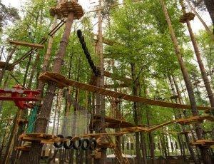 Веревочный парк «Паутина»