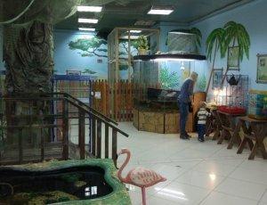 Зоопарк «Обитаемый остров»