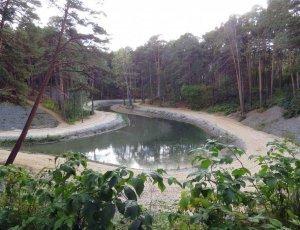 Парк «Гилевская Роща»