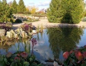 Фото Ботанический сад ЧелГУ