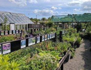 Ботанический сад «Розендал»