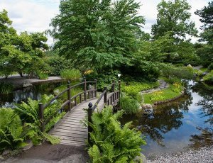 Бергианский ботанический сад