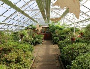 Ботанический сад Латвийского университета