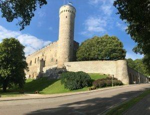 Фото Башня «Длинный Герман»