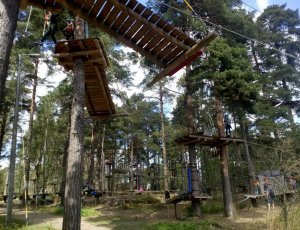 Фото Верёвочный парк развлечений «Seikkailupuisto Korkee»