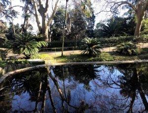 Ботанический сад Лиссабона