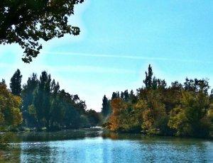 Озеро «Старая Кубань»