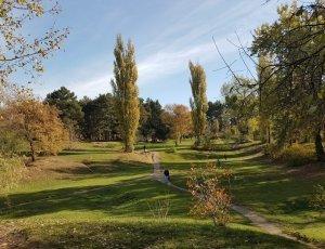 Ботанический сад имени И.С. Косенко
