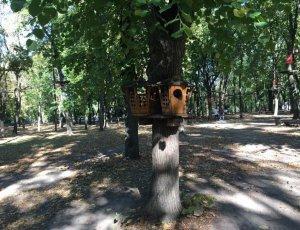 Фото Веревочный Парк «Лень В Пень»